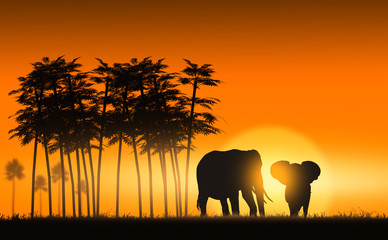 Savanna elephants at sunset