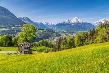 Fototapete - Idyllic mountain scenery with traditional mountain chalet in the Alps in summer