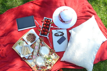 Summer picnic on a red blanket with tray of food and drinks laptop, cell phone and a tablet