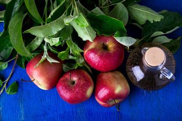 Apple cider vinegar. One glass bottle on blue background. Red apples. Top view.