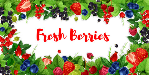 Berries and sweet garden fruits vector banners