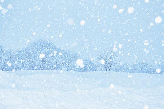 雪景色の白川郷