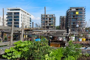 Garten in der Stadt