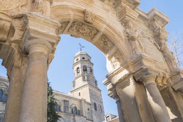 Cathedral of the Assumption of the Virgin, Santa Maria fountain, Baeza, Jaen, Spain