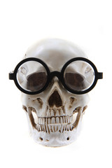 human skull with glasses isolated