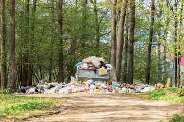 Garbage dump in the forest, the pollution of nature