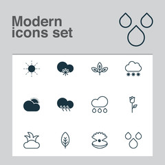 Ecology Icons Set. Collection Of Rain, Sun, Snowstorm And Other Elements. Also Includes Symbols Such As Seashell, Snowy, Branch.