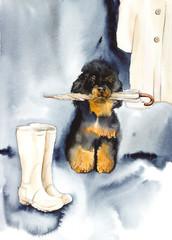 On walk. Rainy day. Portrait small dog. Watercolor hand drawn illustration