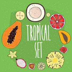 Set of isolated tropical fruits in cross sections, coconut, grapefruit, mango, figs, pineapple, lime, passionfruit, pitaya, carambola, papaya. Realistic hand draw style
