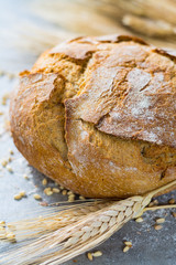 Freshly baked traditional wheat bread and wheat ears
