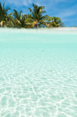 Printed roller blinds Tropical beach Island