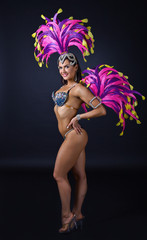 Beautiful Girl in carnival costume.