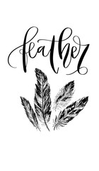 'Feather' - hand drawn lettering in modern calligraphy style. Boho art print with decorative feathers.