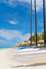 Fototapete - Sailboats and coconut trees at the tropical beach of Varadero in Cuba
