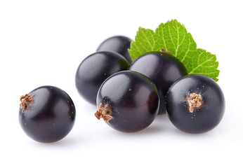 Currant berry in closeup