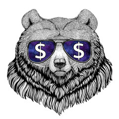 Grizzly bear Big wild bear wearing glasses with dollar sign Illustration with wild animal for t-shirt, tattoo sketch, patch