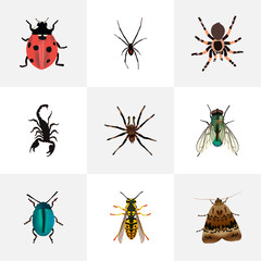 Realistic Poisonous, Ladybird, Bee And Other Vector Elements. Set Of Insect Realistic Symbols Also Includes Wasp, Moth, Bee Objects.