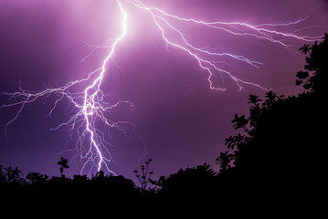 Downward Lightning Stroke on Dark Purple Sky with Silhouette Forest
