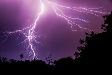 Downward Lightning Stroke on Dark Purple Sky with Silhouette Forest
