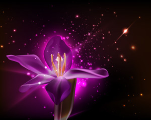 VECTOR: Single purple orchid as background design for greeting cards, invitation and magazine