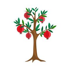 pomegranate tree, vector