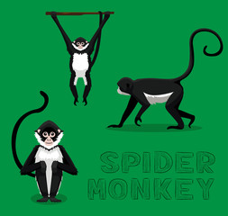 Spider Monkey Cartoon Vector Illustration