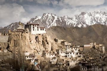 Namgyal tsemo monastery, Ladakh, India. Soft focus