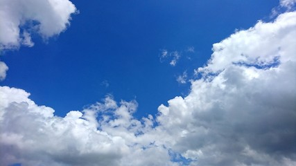 the summer blue sky