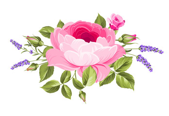 Spring flowers bouquet of color bud garland. Label with rose and lavender flowers. Vector illustration.