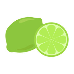 Green lime citrus fruit with shadow and light reflection doodle cartoon vector illustration, isolated on white background. Whole piece and slice.