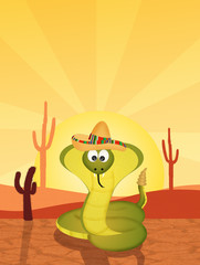 cobra with sombrero in the desert