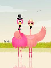 Wedding of pink flamingos