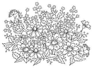 Floral composition, hand drawn, vector