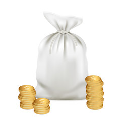 Moneybag and gold coins. Money 3d vector icon. Vector image isolated.