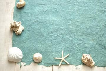白い貝がらのフレーム