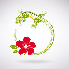 Green Lizard and Red Hibiscus
