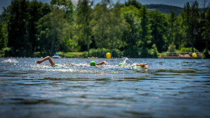 Triathletes in competition, openwater swim