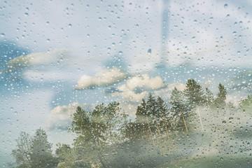 Tras la lluvia / After rain