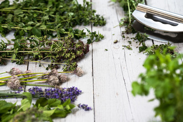 Various of fresh herbs on rustic table
