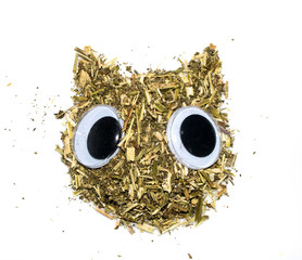 Catnip on in the Shape of a Cat with Eyes on  White Background