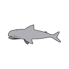 whale wildlife water animal silhouette vector illustration