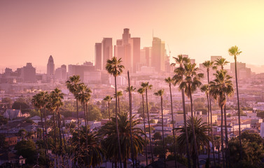 Spoed Fotobehang Los Angeles Beautiful sunset of Los Angeles downtown skyline and palm trees in foreground