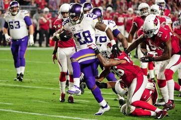 NFL: Minnesota Vikings at Arizona Cardinals