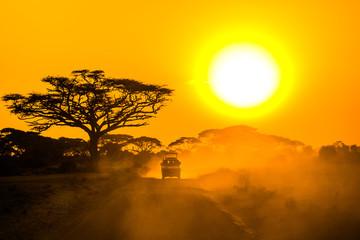 safari jeep driving through savannah in the sunset Wall mural