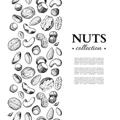 Nuts vector vintage frame illustration. Hand drawn engraved food objects.