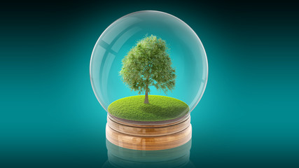 Transparent sphere ball with tree on grass inside. 3D rendering.