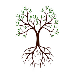 Natural Tree with Leaves and Roots. Vector Illustration.