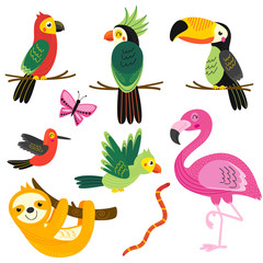set of isolated with tropical animals - vector illustration, eps