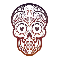 Hand drawn decorative calavera or skull isolated on white backdrop. Vector illustration