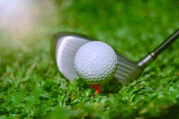 Golf club and ball in grass. The Golf club with golf ball close up in grass field.